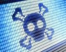 Người dùng cần làm gì để tự vệ trước lỗ hổng bảo mật trên hàng tỷ máy tính?