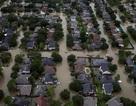 Mỹ thiệt hại hơn 300 tỉ USD vì thiên tai trong năm 2017