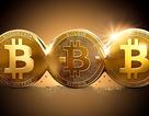 Bộ Tư pháp cảnh báo về đầu tư tiền ảo bitcoin