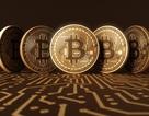 """Người dùng khư khư giữ Bitcoin khiến hacker """"ngán ngẩm"""""""