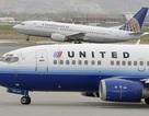 Du khách bôi chất thải bồn cầu khắp nhà vệ sinh trên máy bay