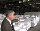 Bốn đại dự án thua lỗ nghìn tỷ của Tập đoàn Hoá chất:  Phải cắt lỗ mới được bán