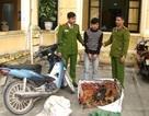 Bắt đối tượng truy nã gây ra 150 trộm cắp tài sản