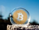 """Thị trường Bitcoin hồi phục sau khi """"bốc hơi"""" 200 tỷ USD"""