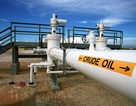 Chạm mức 70 USD/thùng, giá dầu có nguy cơ tụt giảm