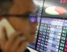 Eximbank thu về được bao nhiêu từ thoái vốn khỏi Sacombank?