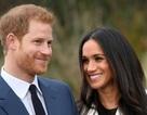 Đám cưới của Hoàng tử Harry có thể mang lại 700 triệu USD cho kinh tế Anh