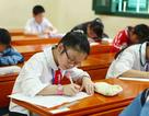 Giáo viên lên tiếng: Tại sao môn Tập làm văn tiểu học khó?