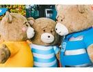 Gia đình gấu mập cực dễ thương làm náo loạn sân bay quốc tế Đà Nẵng