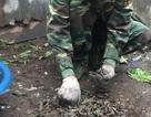 Gom được hơn 3 tấn đầu đạn trong vụ nổ kinh hoàng tại Bắc Ninh