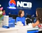 NCB: Tăng trưởng tiếp tục khởi sắc và bền vững