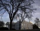 Mỹ bắt người đàn ông mang súng đạn bên ngoài Nhà Trắng