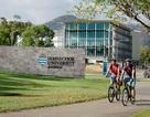 Cơn mưa học bổng khủng từ trường top 2% thế giới Đại học James Cook - Brisbane