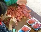 Nhờ bán...lá cây, các cụ bà Nhật Bản kiếm được 52 tỷ đồng/năm