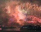 Náo nức không khí đón năm mới của du học sinh Việt trên thế giới
