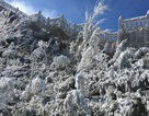 Đêm nay mưa tuyết, băng giá có thể xuất hiện trên đỉnh Fansipan