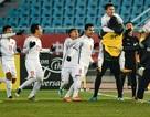 U23 Việt Nam: Từ giải U23 châu Á đến Olympic Tokyo 2020