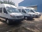 """40 ô tô Trung Quốc nhập sai cửa khẩu, hải quan """"đá"""" sang Bộ Công Thương"""
