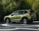 Nhiều xe bị lỗi, Subaru tạm ngừng sản xuất tại Nhật Bản
