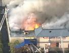 Cháy lớn tại thương xá Phước Lộc Thọ của người Việt ở quận Cam, Mỹ