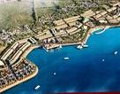 Nhiều lo ngại quanh dự án lấn biển 1.700 tỷ ở Lý Sơn
