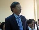 Vụ tranh chấp Thần đồng đất Việt: Công ty Phan Thị kháng cáo