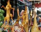 Công chức không được sử dụng động vật hoang dã nguy cấp hoặc dùng làm quà biếu