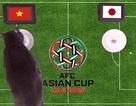 Mèo tiên tri dự đoán tuyển Việt Nam thắng Nhật Bản để vào bán kết