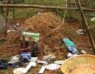Vụ xe buýt tông chết người đem chôn bất minh: Công an huyện trần tình ra sao?