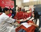 Quảng Bình: Tiếp nhận gần 600 đơn vị máu từ ngày hội Chủ nhật Đỏ