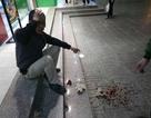 Hà Nội: Ngồi chơi dưới sân chung cư bị gạch rơi trúng đầu