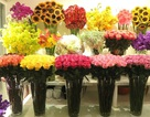 Bí quyết giúp hoa tươi lâu gấp 2 lần trong dịp Tết nhất định phải biết
