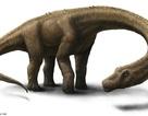 Cuộc chiến giành danh hiệu loài khủng long lớn nhất thế giới
