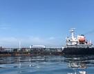 """Ngành dầu mỏ Mỹ lao đao vì chính quyền Trump """"siết"""" trừng phạt lên Venezuela"""