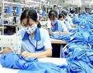 Giáp Tết, tặng hơn 137 triệu đồng cho công nhân mất việc