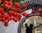 """Cơn ác mộng mang tên tết âm lịch của """"gái ế"""" Trung Quốc"""