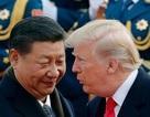 Tổng thống Trump bất ngờ nối lại tình bạn với ông Tập Cận Bình