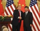 Ông Trump và ông Tập Cận Bình có thể sắp gặp nhau tại Việt Nam