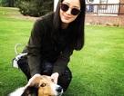 Kim Tae Hee lộ ảnh đời thường hiếm hoi