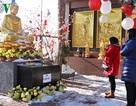 Gìn giữ phong tục đi lễ chùa đầu năm của người Việt tại Séc