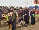Phó Thủ tướng lội ruộng đi cày cầu mùa màng bội thu