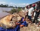 Xác cá voi hơn 10 tấn trôi dạt vào vùng biển Bạc Liêu