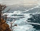 Tìm thấy hàng triệu tấn dầu dưới đáy hồ nước ngọt lớn nhất thế giới