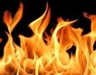 Xin tiền khám bệnh không được, tưới xăng đốt chết vợ