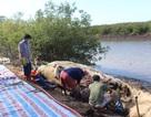 Xác cá voi hơn 10 tấn dạt vào bờ được xử lý thế nào?