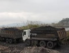 Đánh xe tải vào công ty trộm than, một bảo vệ cùng 8 đối tượng khác bị bắt
