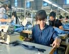 Quảng Ninh: Công khai 59 doanh nghiệp nợ BHXH