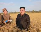 """Kinh tế Triều Tiên tăng trưởng dưới thời ông Kim Jong-un bất chấp lệnh trừng phạt """"bủa vây"""""""
