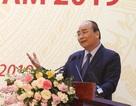 Thủ tướng muốn Việt Nam trở thành công xưởng đồ gỗ của thế giới