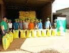 PVFCCo 16 năm liên tiếp giữ vững danh hiệu Hàng Việt Nam chất lượng cao